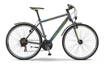 Crossrad Winora Tonga Herren 28' 21-G in grau/lime/blau matt 2015, Rahmenhöhe:46 -