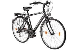 Herrenfahrrad 28 Zoll Hillside City Bird in schwarz Stadtrad City Bike Citybike 21 Gang Shimano Tourney Schaltung Beleuchtung Gepäckträger Seitenständer Trekkingrad -