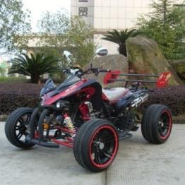 Jinling Racing Quad 250cc Rennquad 2 Personen Autobahnzulassung -