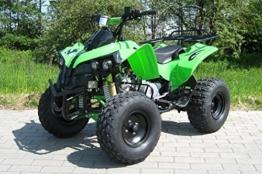 Kinder Quad S-10 125 cc Motor Miniquad 125 ccm grün Warriorer -