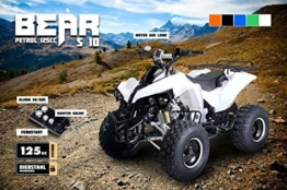 Kinder Quad S-10 125 cc Motor Miniquad 125 ccm weiss Warriorer -