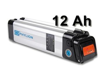 Maratron Akku XH259-10J für E-Bike Pedelec 24V 12Ah für u.a. Phylion,MiFa, Rex, Prophete (SF) -