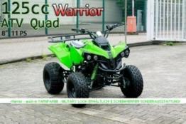 WARRIOR 2012 Edition Quad ATV 125 ccm 1-Zylinder, 4-Takt, luftgekühlt Metallic -