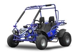 Maxi Buggy 200cc Ölgekühlt E-Start Automatik CVT mit Rückwärtsgang Offroad Quad ATV Bike Midi (Blau) -