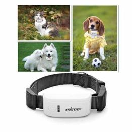 eyeCam EC53 GPS-Tracker Peilsender Personen und Tiere GPS-Sender Echtzeitlokalisierung GPS Tracker für Tiere Kinder Senioren Funktion KFZ SMS GPRS mit Onlinetracking -